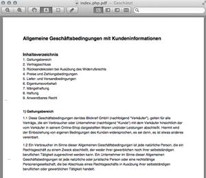PDF-Preview_2